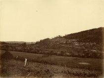 Image of Albumen - Chattanooga