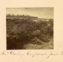 Image of Albumen - Fort Darling, Va.