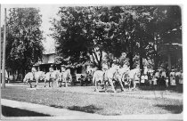 Image of Hagenback & Wallace Circus - Eckhart Public Library Postcard Collection