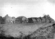 Image of Hay Harvest - JMS DeKalb Co. 1837-1987 Collection