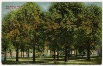 Image of Old School Park, Auburn, Indiana Postcard - John Martin Smith Postcard Collection