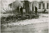 Image of Tree Damage after Snow and Ice Storm - John Martin Smith Miscellaneous Collection