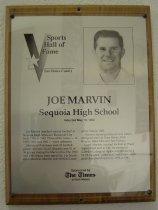 Image of Joe Marvin