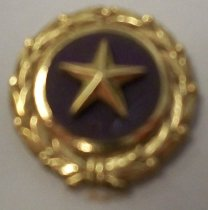 Image of WWII Gold Star Mother's Pin 2010.090.070