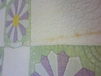 Image of Dresden Plate Variation Quilt Detail