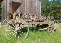 Image of RF2003.036 - McCormick-Deering seeder/wagon.  Large wooden seeder wagon has four large 14-spoke wooden wheels with iron band metal tires.  The two back wheels are larger than the front.  Wooden body was once painted green while wooden back plate above bed at back to which trapezoid shaped iron hopper is mounted is painted red.  Back end of bed below hopper is hinged to fold down.  There are two metal gears below hopper attached to shaft that is connected to a chain that is wrapped around an inner metal circle attached to back left wheel so that when wheel is in motion chain and gears turn dropping seeds from hoper that are distributed via two spinning fan blades mounted below gears.  Back wheel shaft is mounted securely to both sides of wagon bed while front wheel shaft is mounted to center front of bed and supported by a bent wood metal-lined circular beam, so that wheels can move side to side and wagon can turn.  Front wooden beam is mounted to an iron rod that is securely mounted to both ends of front wheel shaft.  Front of wagon bed is open, but two vertical notches in front side walls indicate that a front bed wall is probably missing.