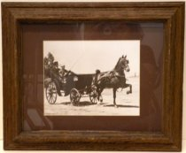 Image of 1977.134.003 - Photograph of Lurline Roth Driving Carriage led by a single brown horse.  Sepia photograph is mounted under glass beneath a brown colored mat inside a brown stained rough wooden frame.  Image depicts a female figure wearing a brimmed hat, large-print floral dress and holding a horse whip driving a single-horse carriage in a field with trees in the background at left.  The top is down on the convertible carriage and a footman wearing a top hat rides in the back.  Horse is dark and its feet are in motion.