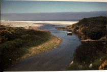 Image of c. 1985 Gazo Creek by Frank Spadarella