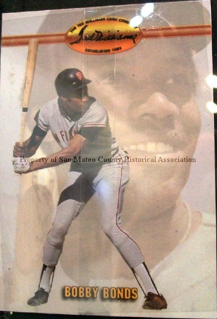 2015003034 Bobby Bonds Baseball Card 1993 Ted Williams