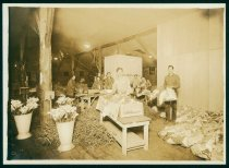 Image of Packing shed of the California Floral Co., Redwood City, Photograph, c. 193