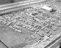 Image of San Carlos Auto Salvage Yard, 1962