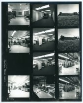 Image of 2016.015.001.17 - Untitled (Carter and Burry Photography Contact Sheet), c. 1957-1975
