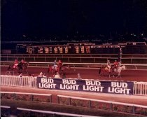 Image of Night Racing With Bud Light Signs