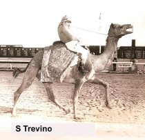 Image of S Trevino