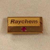 Image of ID photo for Raychem Service Award Lapel Pin with Ruby Stone, c. 1974-1999