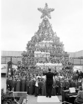 Image of 2015.001.01532 - Singing Christmas Tree at Hillsdale Shopping Center in San Mateo
