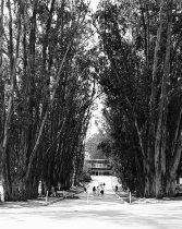 Image of Entrance to Aragon High School, San Mateo, 1962