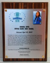 "Image of 2017.010.004 - Chioma Igwe Sports Hall of Fame Plaque, 2017. Rectangular brushed metal plaque attached to laminate wood grain board with copper colored brads.  Hole drilled in top center of wood portion. Peninsula Sports logo in upper left corner of metal portion - green trophy cup surrounded by blue stars - ""2017 Peninsula Sports Hall of Fame."" 