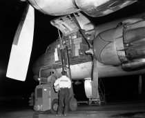 Image of 2015.001.02004.2 - Flower Shipment from SFO, 1961
