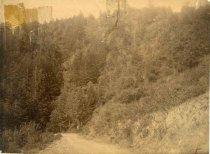 Image of 0000.217.002.4 - King's Mountain Road, c. 1850-1880