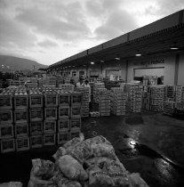 Image of 2015.001.05987.8 - Golden Gate Produce Terminal, South San Francisco, September 8, 1964