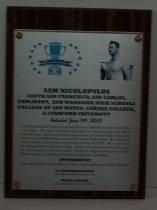 Image of Nicolopulos, Sam