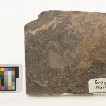 Image of Marble, 12475 with scale bar.