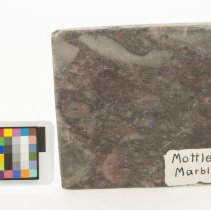 Image of Marble, 12482 with scale bar.