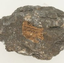 Image of Graphite, 12550 with adhered historic label.