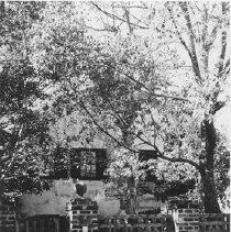 Image of 45 Anson Street