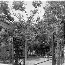 Image of 2006.010.302-304 - Washington Square Park
