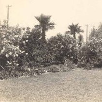 Image of J:  68 South Battery Garden