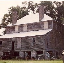 Image of Friendfield Plantation - 1996