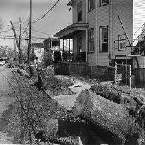 Image of HUGO.002.066 - Upper Coming Street After Hurricane Hugo