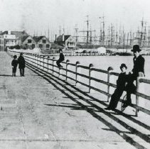 Image of Looking North on the Battery - late 19th c.