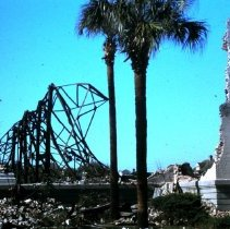 Image of Ruins of the Charleston Museum on Rutledge Avenue - 1981