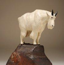 Image of 1991.108.03 - Untitled (Mountain Goat)