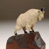 Image of X1975.24.80 - Mountain Goat