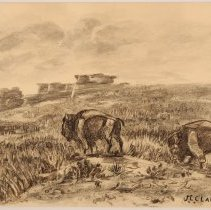 Image of X1975.24.01 - UNTITLED (TWO BISON)
