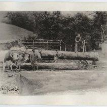 Image of 1926.28.352 - Print, Photographic