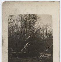 Image of 1976.227.166 - Postcard