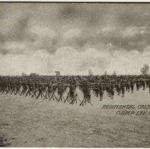 Image of Regimental Calisthenics