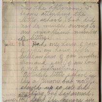 Image of Thomas Shook Diary- Page 029