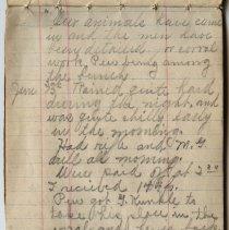 Image of Thomas Shook Diary- Page 030