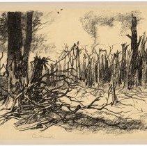 Image of Bouffignereux Woods