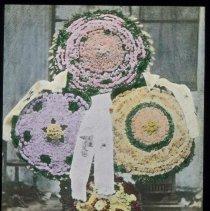 Image of Lantern slide, color,of floral decorated parasols, used for promotional display in Hoboken, no date, ca. 1920. - Transparency, Lantern-slide