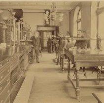 Image of Sepia-tone photo of the Counting Room of the Hoboken Bank for Savings, Hoboken, Feb. 2, 1894. - Print, photographic