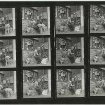 Image of Two B&W contact sheets with 22 images of Honey O'Leary  & her Sinatra shrine at 60 Willow Terrace, Hoboken, 1998. - Print, photographic