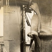 Image of Image: profile view of the rudder and propeller of an unidentified vessel in dry dock, no place, no date, ca. 1932-39. - Print, photographic