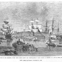 Image of plt opp 296 Docks